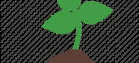 RC Muthaiga Tree Planting